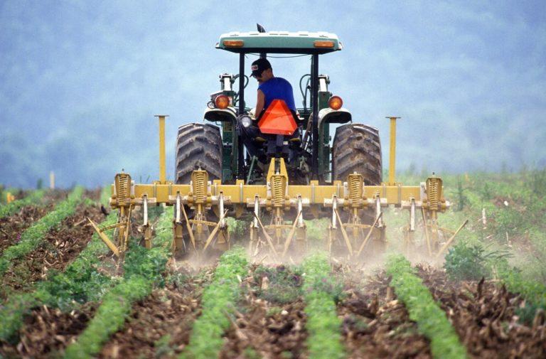 Jak stosować herbicydy aby zapewnić ich właściwe działanie?